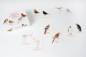 match_a_pair_of_birds_cards_2_2